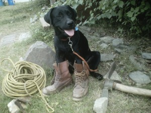 Cooper, ready to dig a hole for a bone, is equipped with climbing rope, hiking boots, and mattock.
